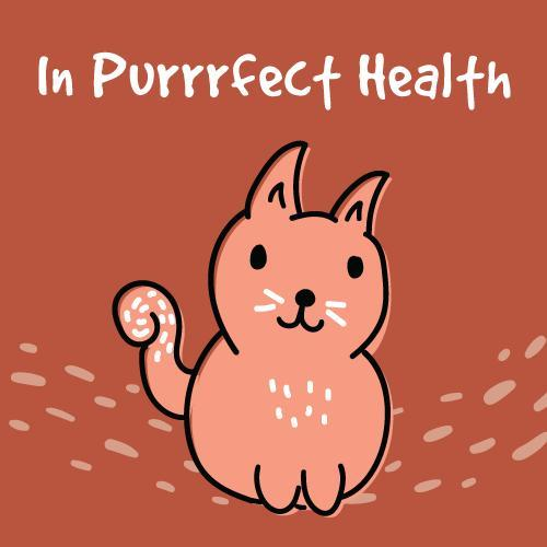In purrrfect health